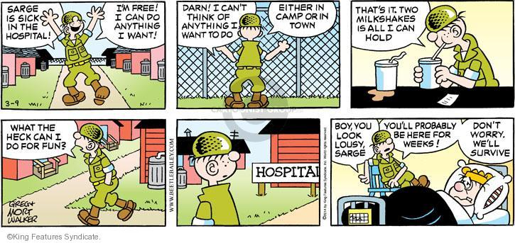Adult comic strips + beetle bailey