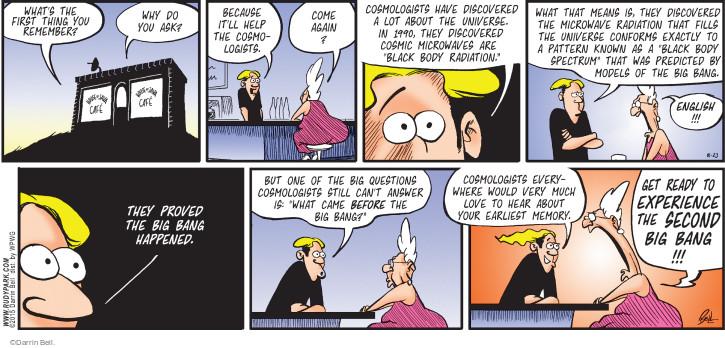 Big bang comic strip your