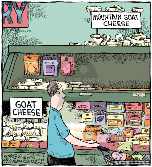 Mountain goat cheese. Goat cheese.
