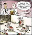 Comic Strip Dave Coverly  Speed Bump 2012-01-25 vegetable