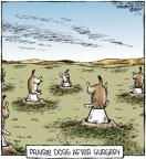 Comic Strip Dave Coverly  Speed Bump 2012-07-04 veterinary
