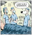 Comic Strip Dave Coverly  Speed Bump 2012-12-27 veterinary