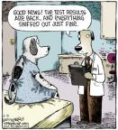 Comic Strip Dave Coverly  Speed Bump 2013-05-21 veterinary