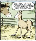Comic Strip Dave Coverly  Speed Bump 2013-11-01 horse