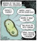 Comic Strip Dave Coverly  Speed Bump 2013-11-09 cell biology