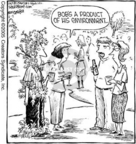 Comic Strip Dave Coverly  Speed Bump 2005-06-02 vegetation
