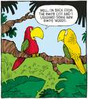 Comic Strip Dave Coverly  Speed Bump 2008-01-30 bird