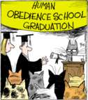 Comic Strip John Deering  Strange Brew 2016-03-15 graduation